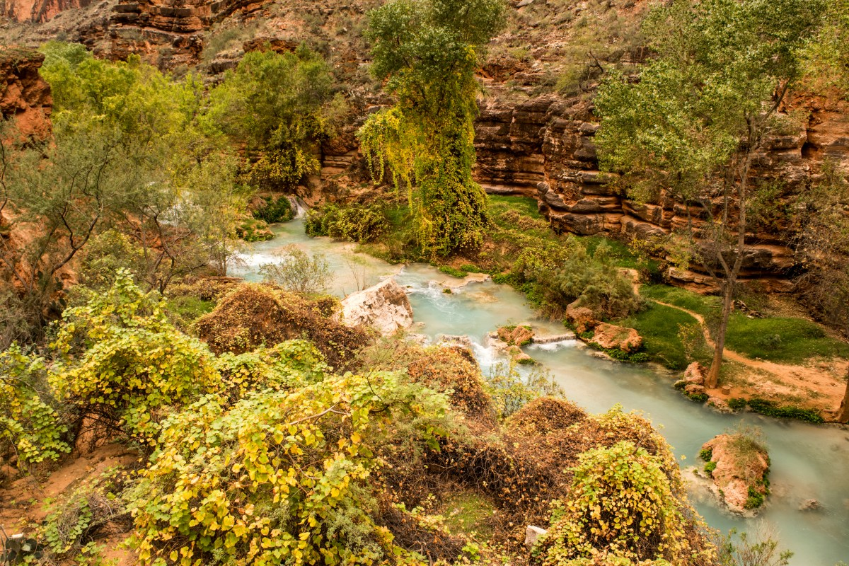 Backpacking Havasupai